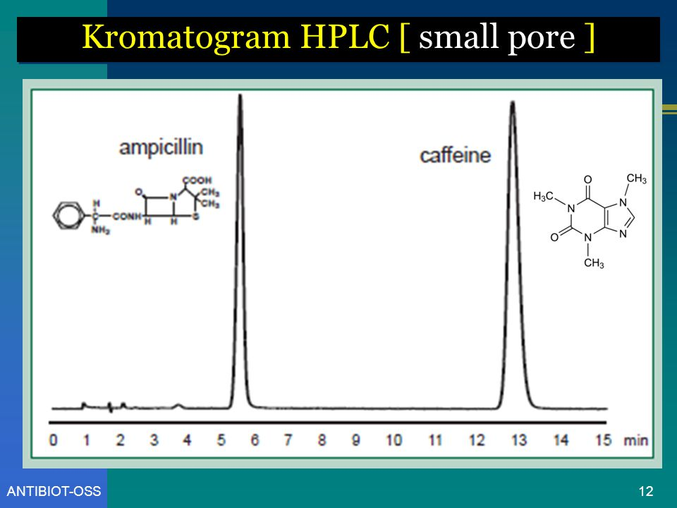 Kromatogram HPLC [ small pore ]